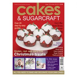 Cakes & SugarcraftWinter 2012-13