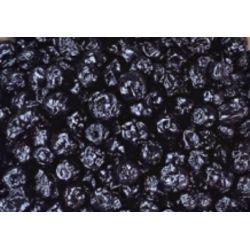 美國藍莓乾 250g