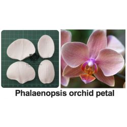 Flower Mould-Phalaenopsis orchid petal