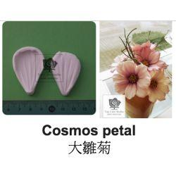 Cosmos petal