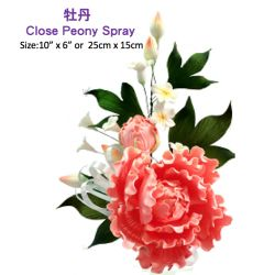 Close Peony Spray