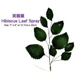 Hibiscus Leaf Spray