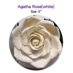 Agatha Rose(white)