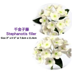 Stephanotis filler