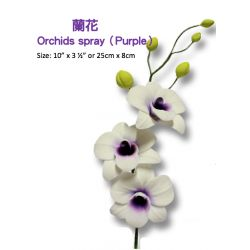 Orchids Spray2