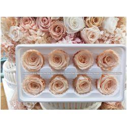 保鮮花-玫瑰(香檳色)