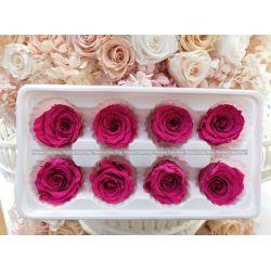 保鮮花-玫瑰(玫紅色)