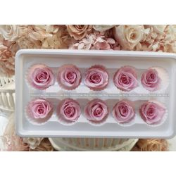 保鮮花-玫瑰(粉紅色)