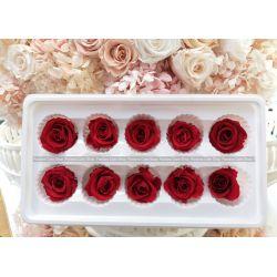 保鮮花-玫瑰(紅色)