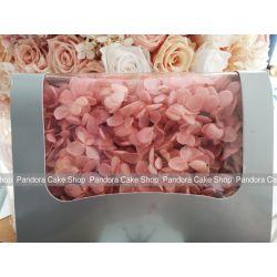 保鮮花-繡球花(珊瑚粉)